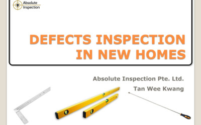 Defect Inspection in New Homes